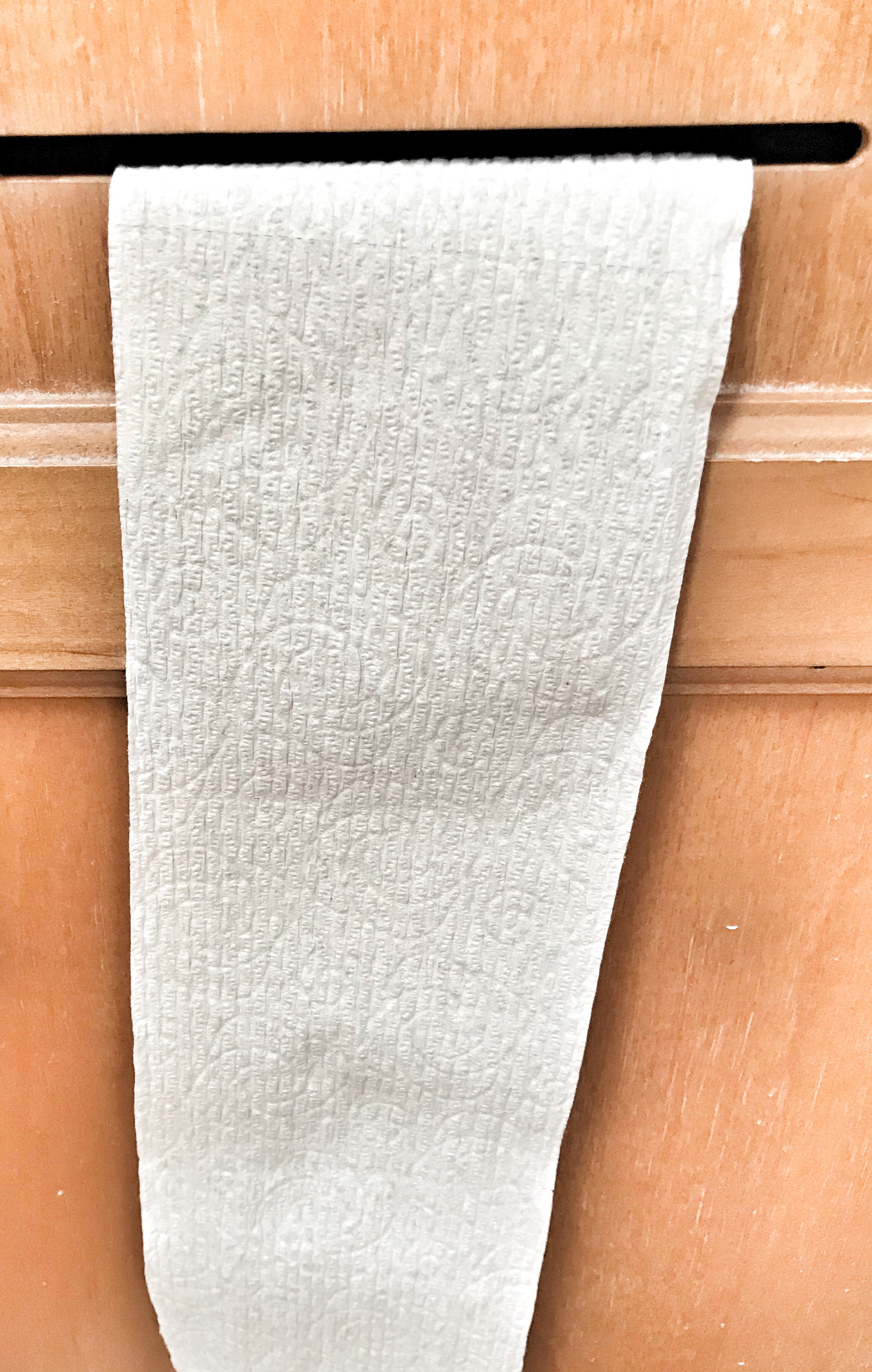 A clean piece of toilet paper