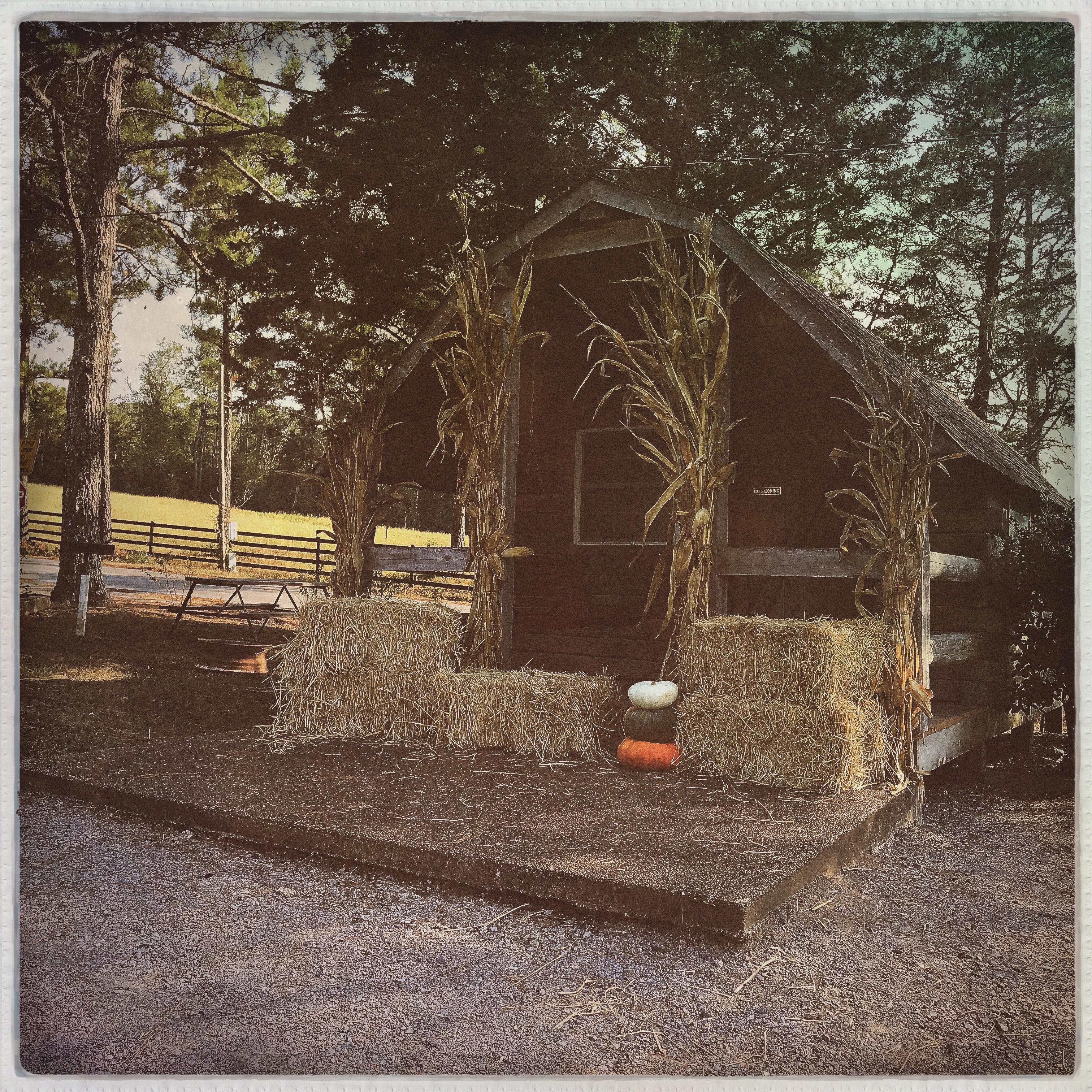 Halloween hut