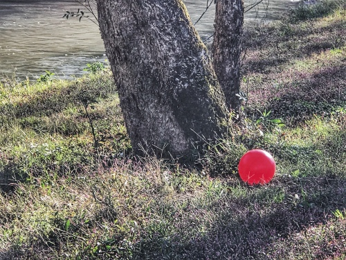 Red ball by a tree