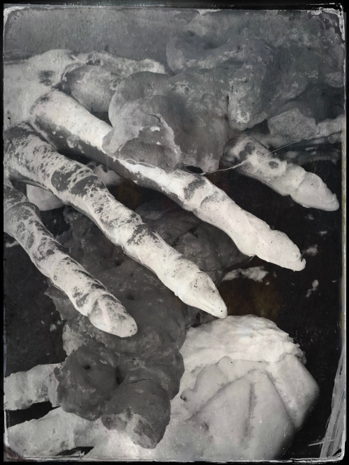 Boney hand